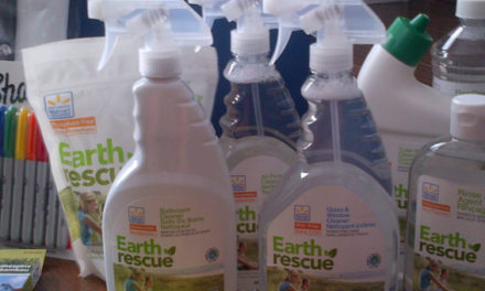Earth Rescue Challenged Thebabyspot.ca To Detox Our Home!