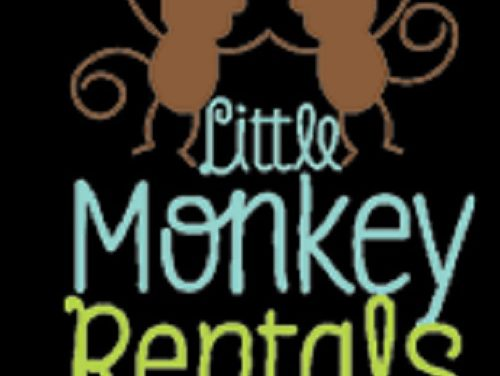 Going On A Trip? Rent Items For Your Baby! – Little Monkey Rentals