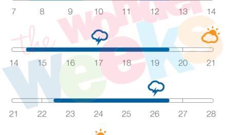The Wonder Weeks App