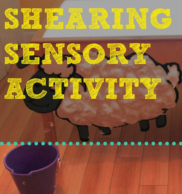 Sheep Shearing Sensory Activity | The Baby Spot
