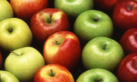 Holistic Nutrition Consultations- Step By Step