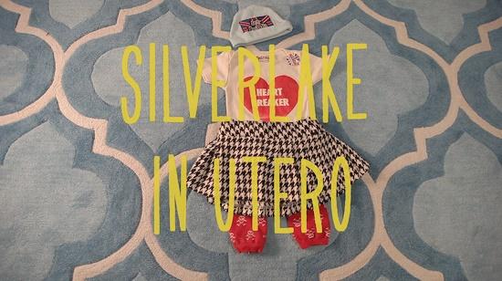 Silverlake In Utero- Wine Picnic!