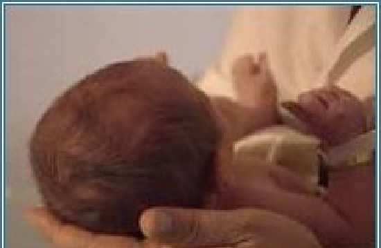 The Baby's Soft Spot- Handling A Baby's Head