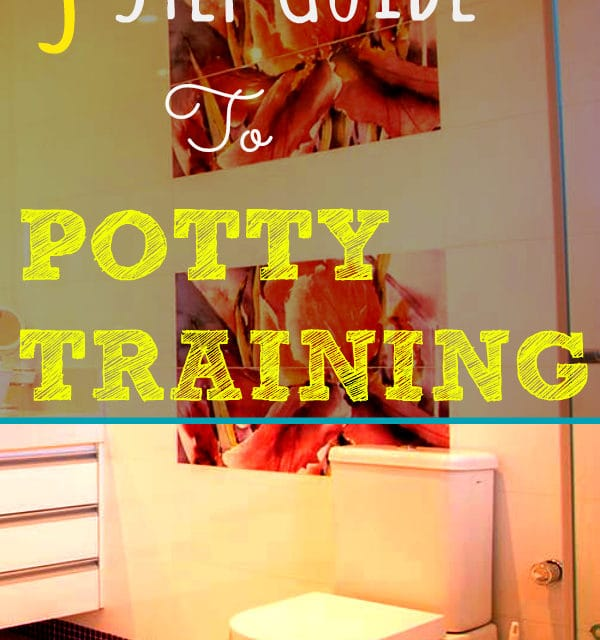 3 Step Guide To Potty Training | The Baby Spot