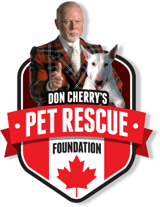 The Cherry Story on Pet Ownership