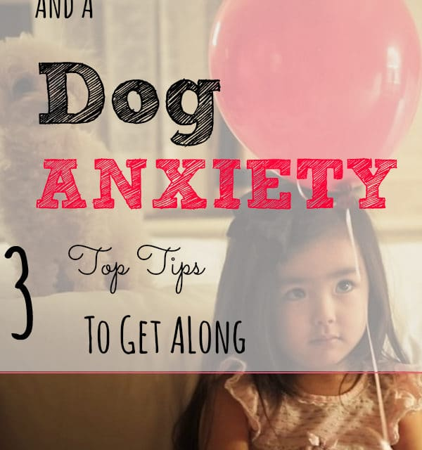 New Baby and A Dog Anxiety: 3 Top Tips To Get Along