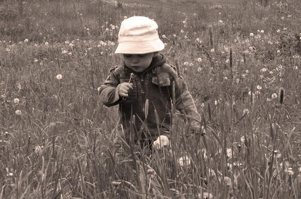 Top Parent Blog Posts of The Week