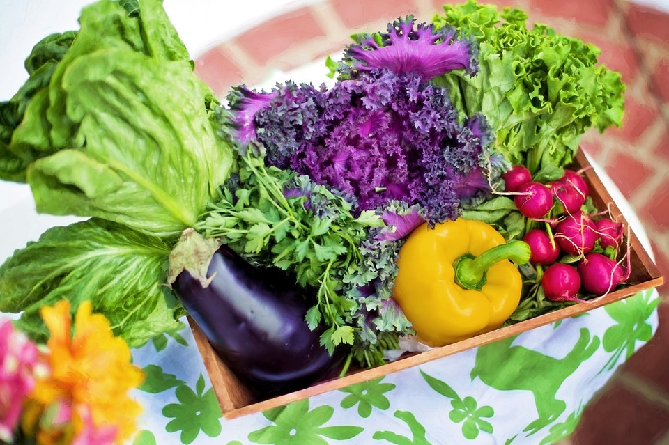 10 Tips To Involve Your Children In Organic Gardening
