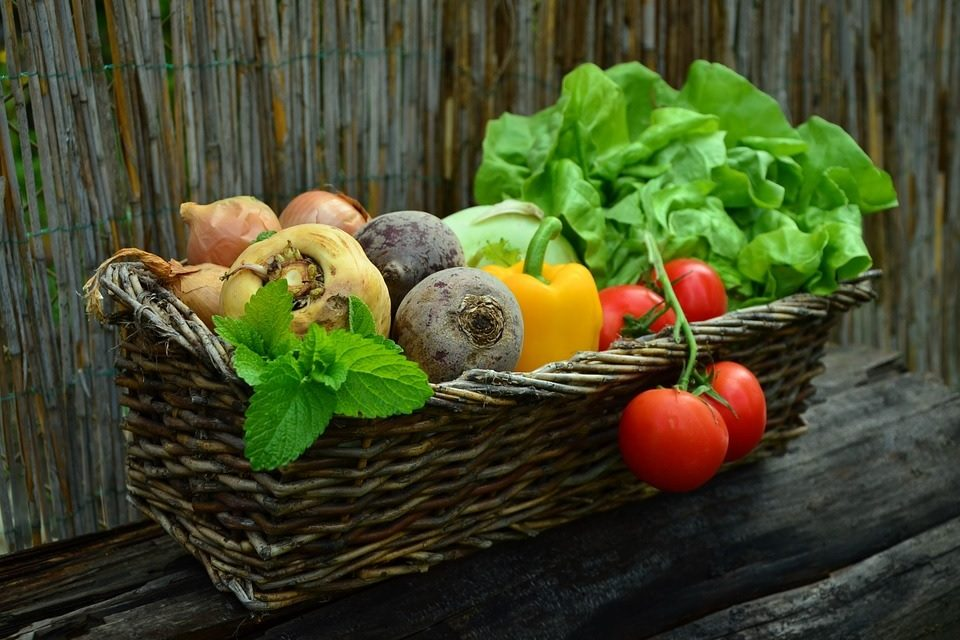 Teach Your Kids To Love Their Veggies Using These Tips