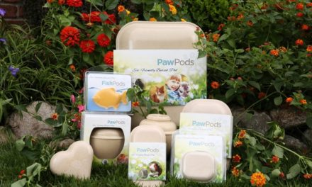 Paw Pods- A Way to Honour Your Pet