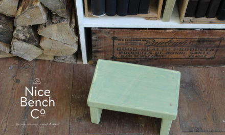 Kidpreneur Making A Difference Through The Nice Bench