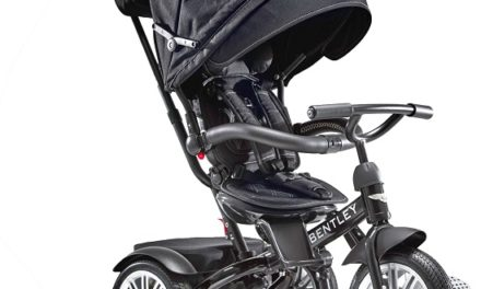 You Haven't Lived Until You Have Seen the Bentley Stroller