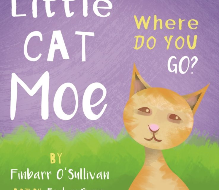 Little Cat Moe- Where Did You Go?