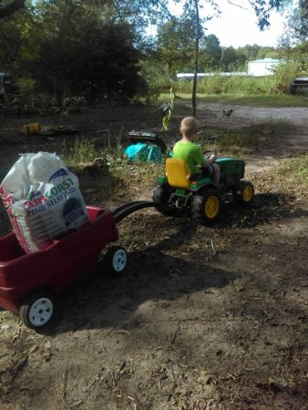 Why Teaching Children About Agriculture Is Still Important