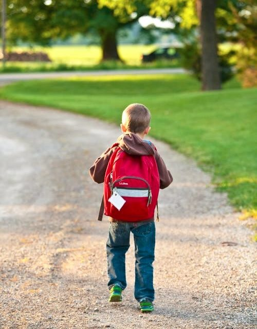 The Challenge of Traditional Schooling for Children with Special Needs