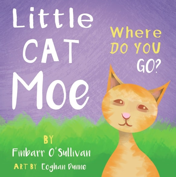 Little Cat Moe Book
